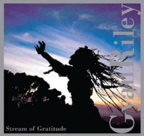 Gyan Riley: Stream of Gratitude