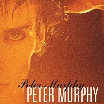 Peter Murphy: 5 Albums