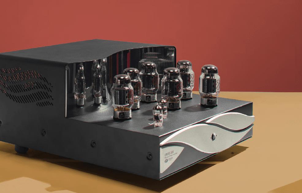 Zesto Eros 300 Monoblock Amplifier